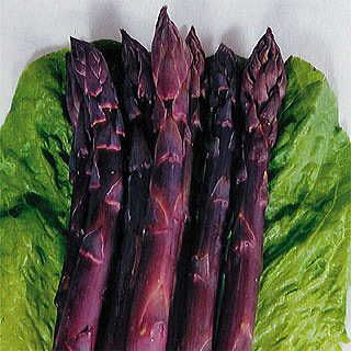 Sweet Purple Asparagus Sweeter and Richer in Antioxidants!