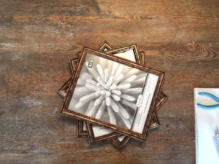 Terrariums are hot right now and so are the prices. Using six to eight  dollar store picture frames, you can make one for a lot less. For my project, I purchase…