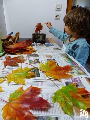 Pour conserver les feuilles longtemps avec leurs belles couleurs : les tremper dans de la cire avant de les laisser sécher...