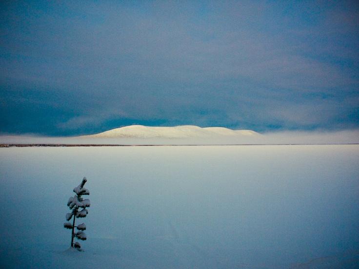Pallas, Muonio. Amazing Finland!