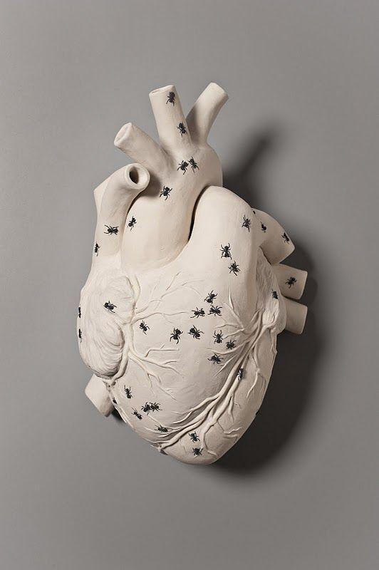 Kate MacDowell #heart #art #sculpture