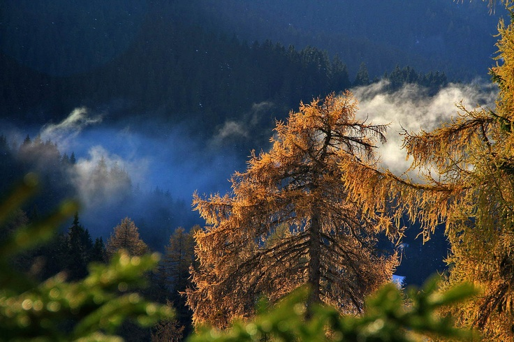 Wonderful Dolomites Autumn Image