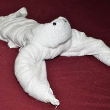 Can't wait for my next overnight guests! Towel Animals! Awesome!