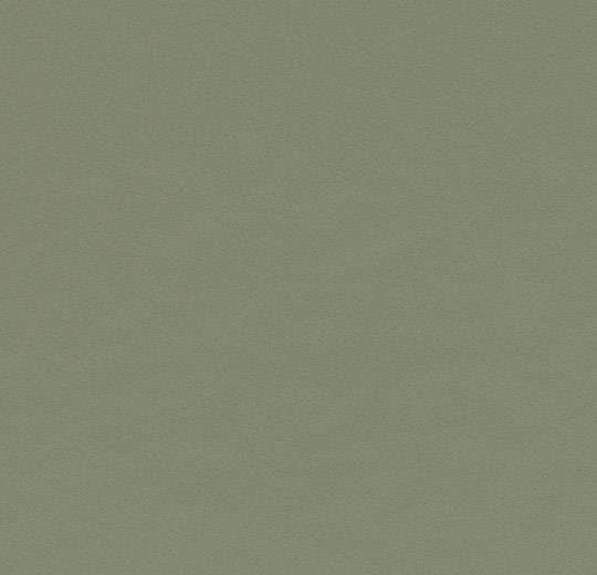 4184 olive