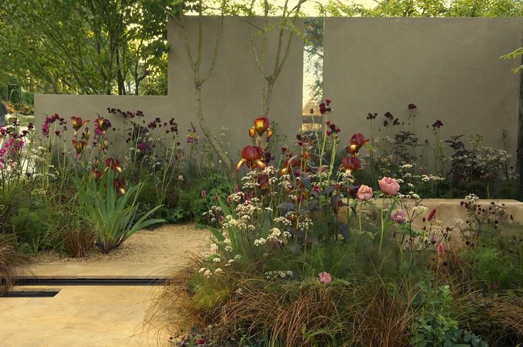 soft loose planting with grasses - Sarah Price Landscapes