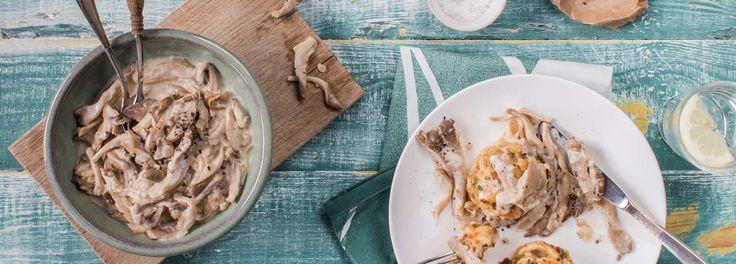 Selbstgemacht schmeckt doch am besten! Probieren Sie unser Rezept für Pilz-Semmelknödel mit Austernpilz-Sahnesoße! Schnell und leicht zubereitet. REWE wünscht guten Appetit!