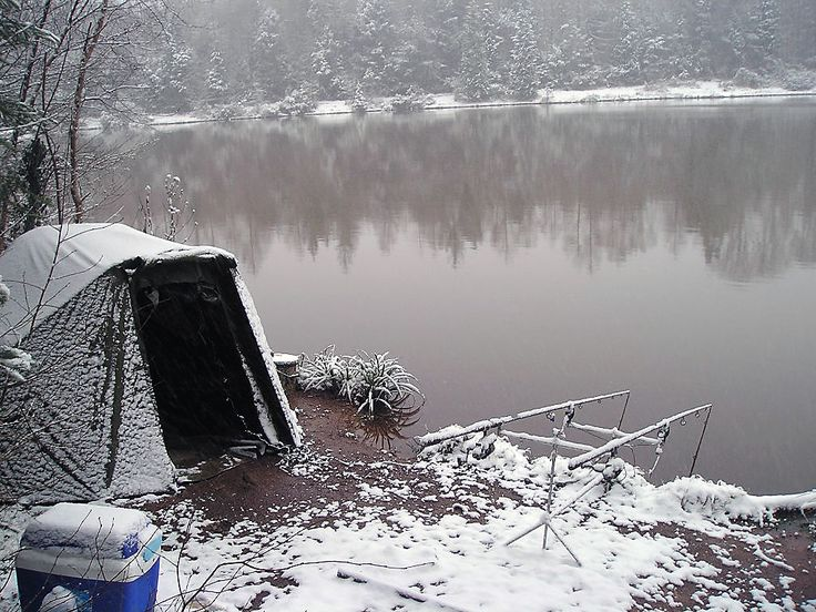 true winter carping