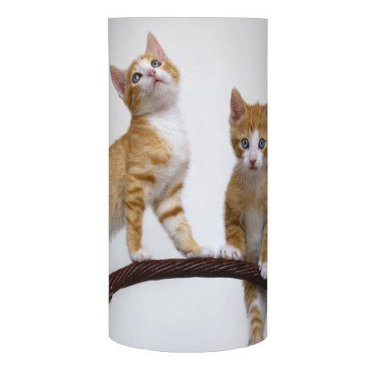 """Cute Baby Kitten Funny Play Gym Photo Cat Lover """" Flameless Candle - animal gift ideas animals and pets diy customize"""