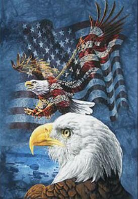 America, Land of Freedom, Home of the Brave!