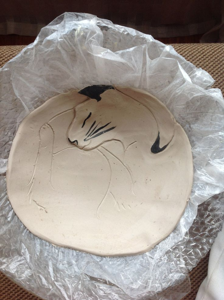 sleepy cat bowl idea
