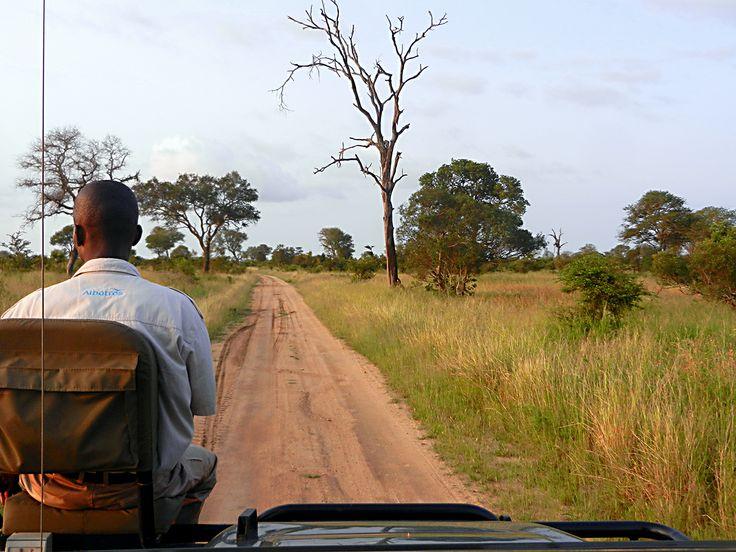Krugerin luonnonpuisto, Etelä-Afrikka
