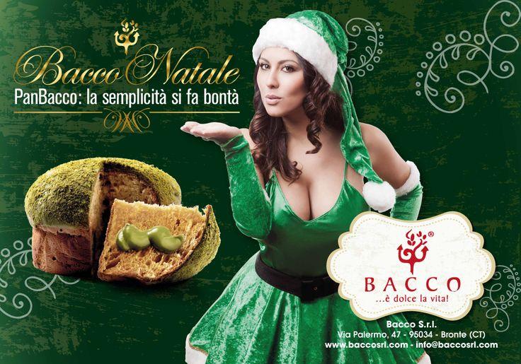 Campagna pubblicitaria Natale 2013