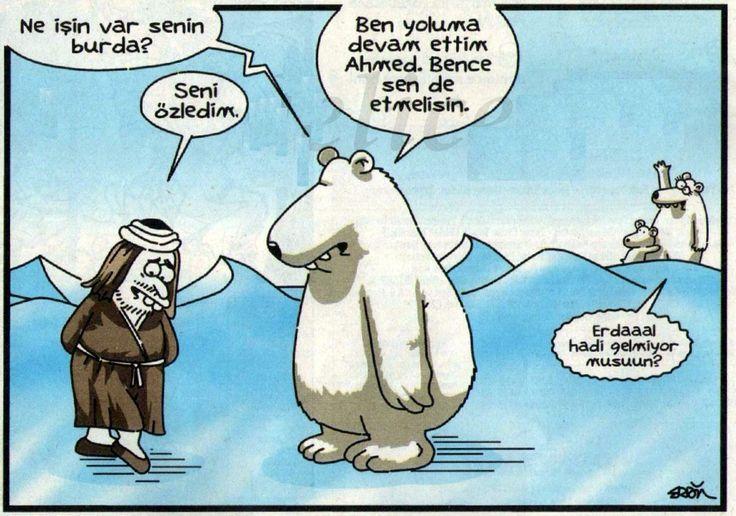 Bahtsız kutup ayısı