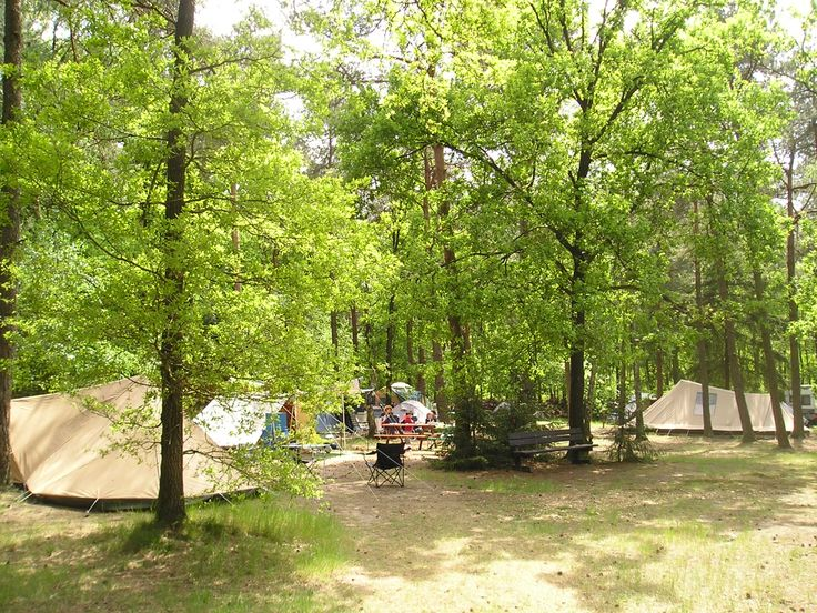 Beek en Hei - Rust en Natuur Camping - Hoge Veluwe - Otterlo - Welkom