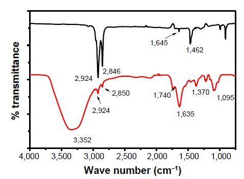 Figure 4 Fourier transform infrared spectroscopy (FTIR) of nanoparticles.