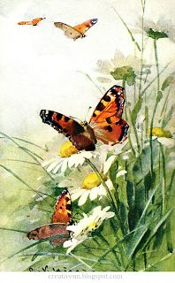 ♥ Creative NN. Блог Альбины Рассеиной. ♥: Vintage. Catherine Klein. Бабочки. Старинные иллюстрации.