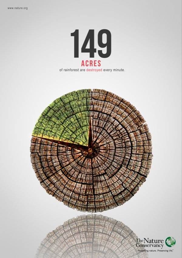 25 best protect tropical forests 5 images on pinterest deforestation poster by sutowar fui via behance fandeluxe Images