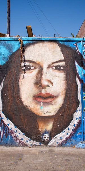 Wall Art / Barrios Brasil & Yungay: http://callechile.blogspot.cl/2016/04/wall-art-yungay-y-brasil-7.html