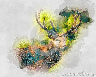 Deer. Watercolor art for your design.