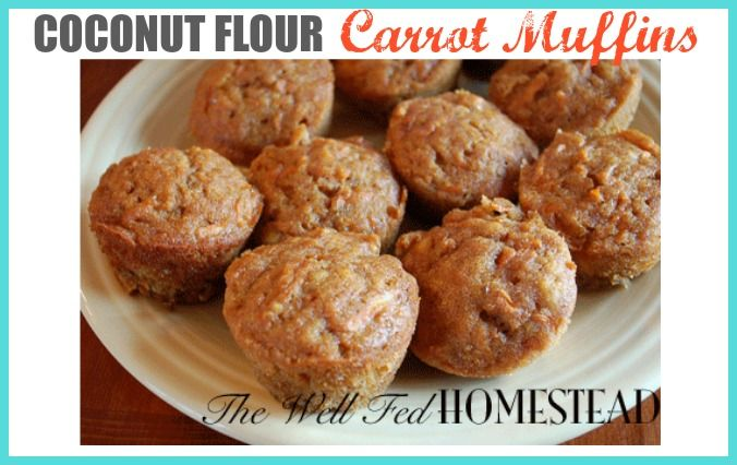 Post image for Coconut Flour Carrot Muffins {GAPS legal}