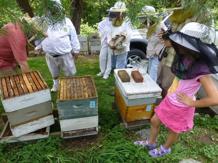 Charmant David Papke Beekeeping Workshop.