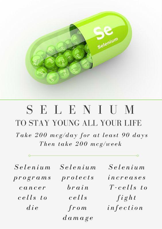 12 Best Anti Aging Foods That Prevent Premature Aging