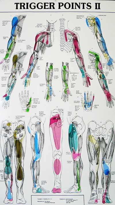 Every wonder why the body creates trigger points? Check us out at training-ppsseminars.com More