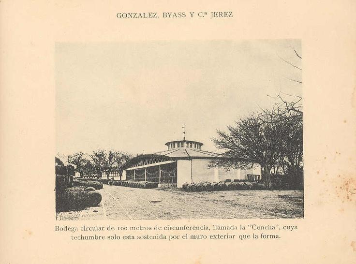 """Bodega circular de 100 metros de circunferencia, llamada """"La Concha"""", cuya techumbre sólo está sostenida por el muro exterior que la forma."""