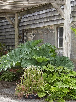 Landscaping Tips from Sean Conway - Garden Design Ideas - Country Living