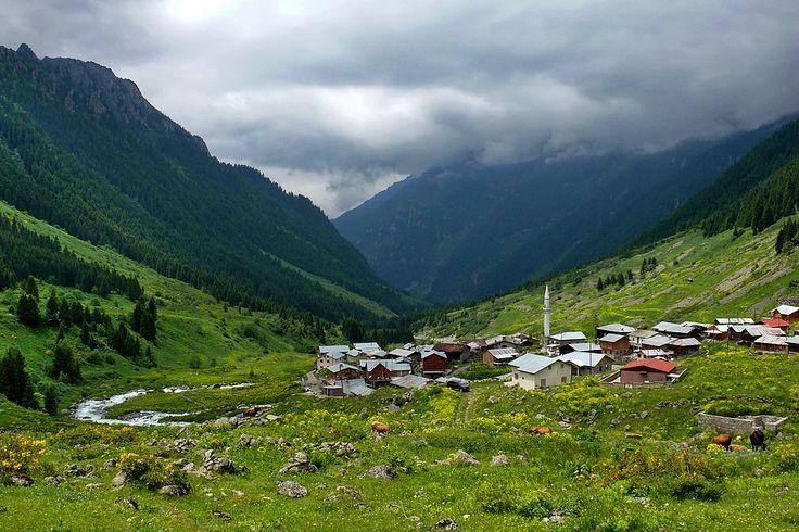 Elevit Yaylası, Çamlıhemşin/Rize Denizden 1800 metre yükseklikte bulunan bu bölge Yayla Köyü adıyla da bilinir. Ziyaret için en uygun zamanlar Ağustos ayının 15'i, bu günlerde şenlikler de yapılmakta. Gece yarısına kadar süren horonları izlemek keyifli olacaktır.