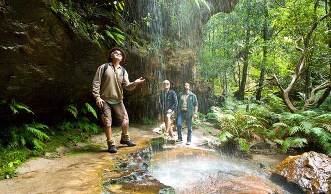 Best free camping sites NSW