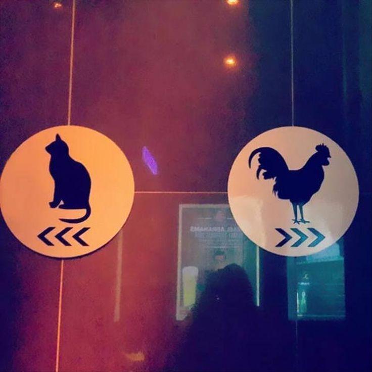 Best 25 Restroom signs ideas on Pinterest Toilet signs Unisex
