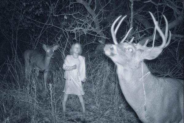 """Unedited Photos Of Wild Life's Oddities Captured By Trail Cams.""  Ok, this is downright scary-creepy!  And, if real, what the hell is this little girl doing in the woods, in the dark?!"