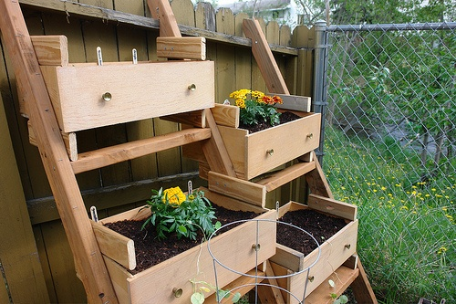 container garden in reclaimed drawers