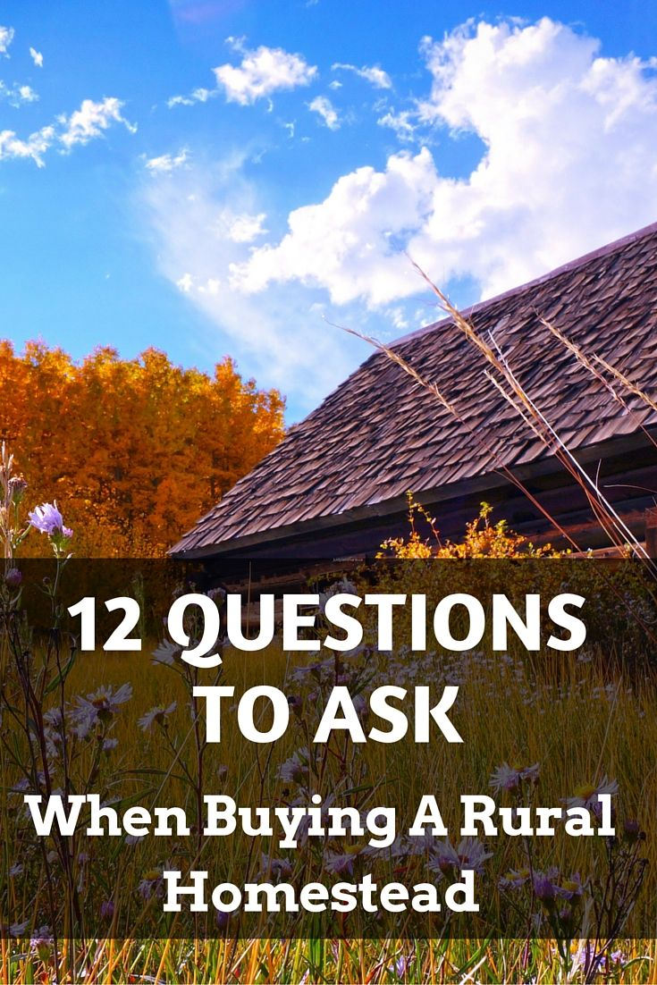 Save yourself a lot of headache by asking the right questions when buying land for a rural homestead