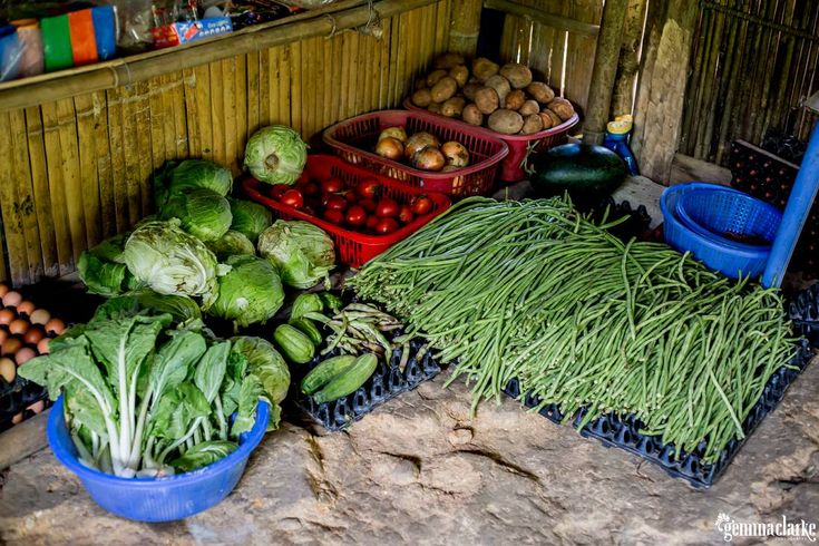 A Sapa Trekking Homestay is the only way to experience these amazing villages in…