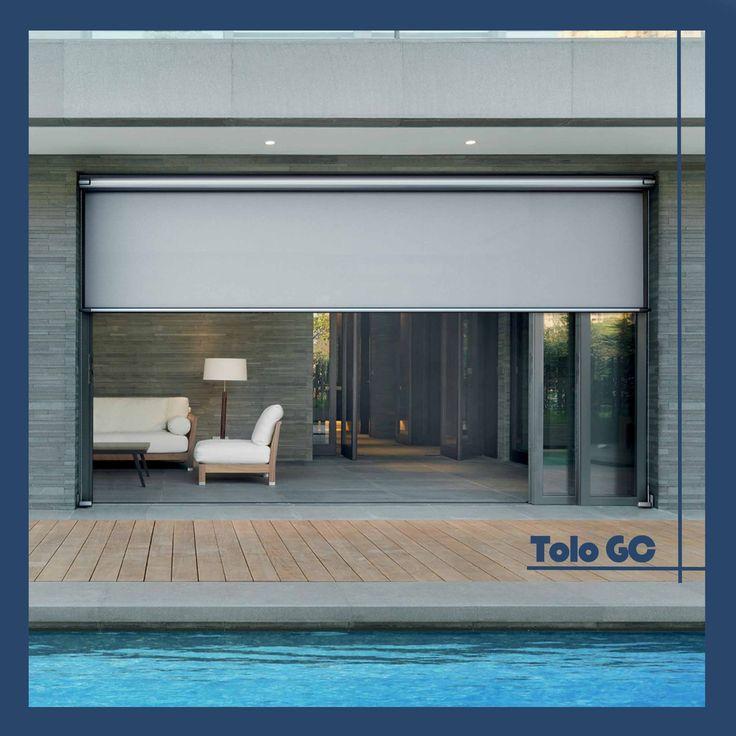 Tolo-Gibus