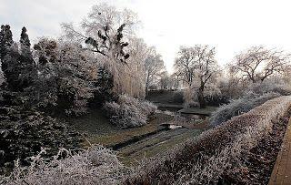 Toruń moje miasto: Zimowy spacer do parku