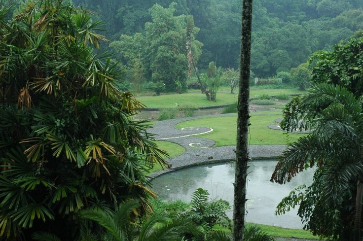 BotanicalGardens_Rain.JPG (800×532)