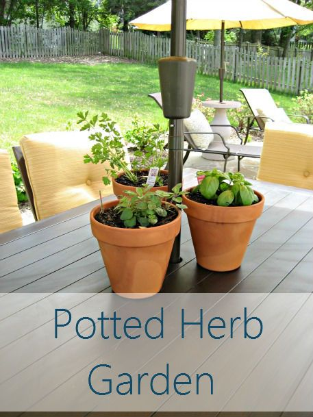 1000 ideas about potted herb gardens on pinterest for Herb garden ideas for small spaces