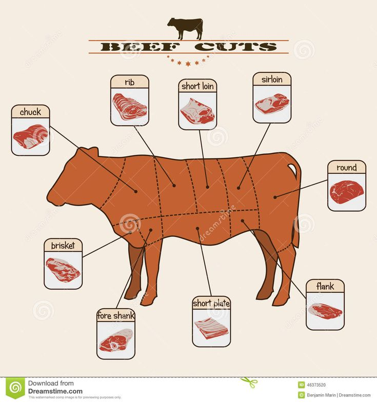 Beef Cuts Stock Vector - Image: 46373520