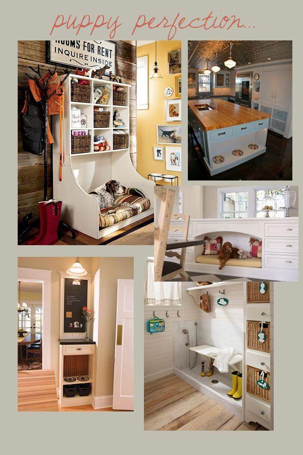 Pet Friendly | Furniture | Decor