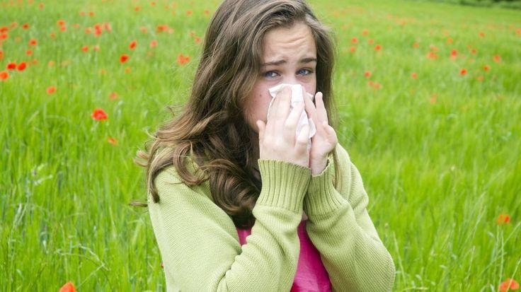 #Rhinite allergique: pourquoi il ne faut pas laisser ses crises allergiques sans traitement - RTBF: RTBF Rhinite allergique: pourquoi il ne…