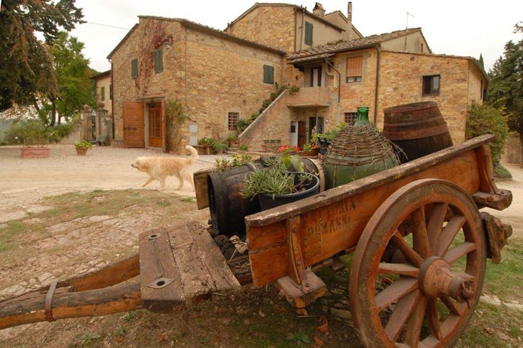"""Have an """"Italian break"""" tasting one of the best Italian wines and enjoying a light delicious Tuscan lunch! Live your immersive Tuscan experience at Fattoria Casa Sola. Only on Faberest."""