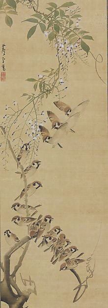 Sparrows Alighting on Wisteria. 長沢芦雪 Nagasawa Rosetsu (Japanese, 1754–1799). Edo period. ca. 1795–99. Japanese hanging scroll; ink and color on silk. The Feinberg Collection.