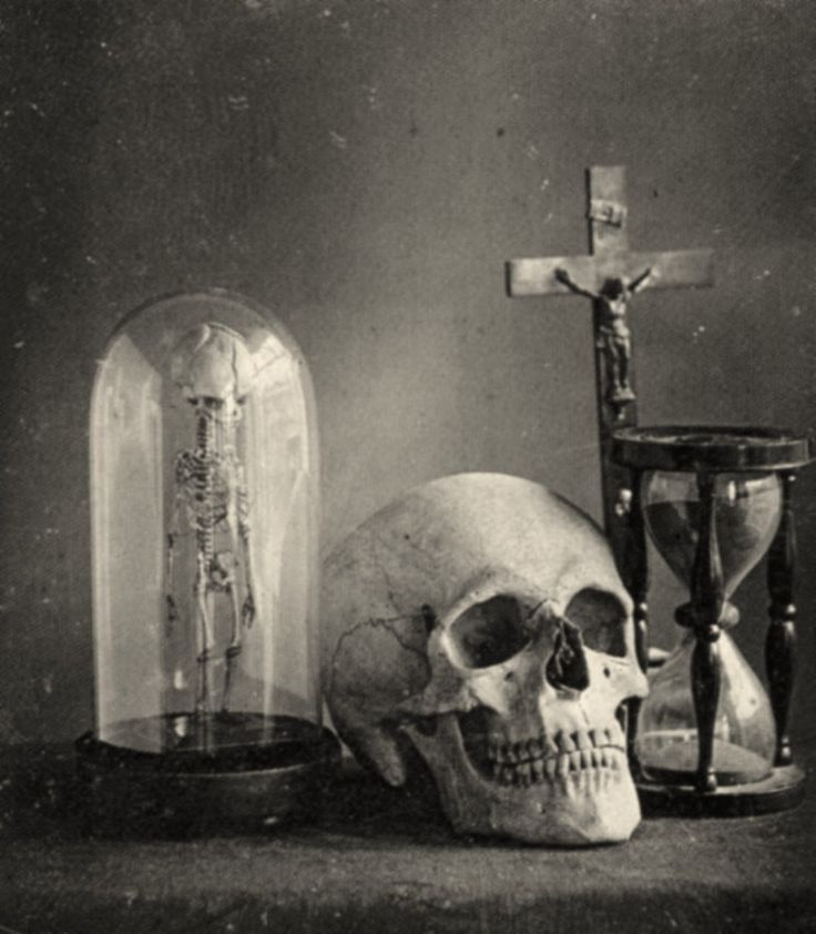 """""""Still life with skull"""" – old daguerrotype from 1850. I have a print of this hanging in my living room."""