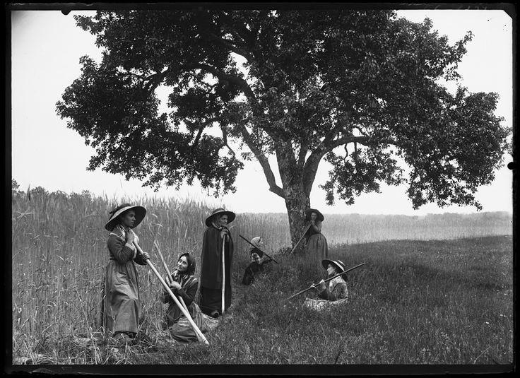 Lüe, sarcleuses, 1894, collection musée d'Aquitaine