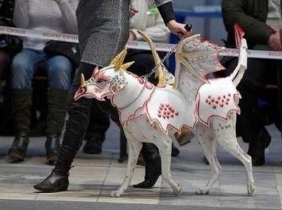 disfraces para perros grandes baratos