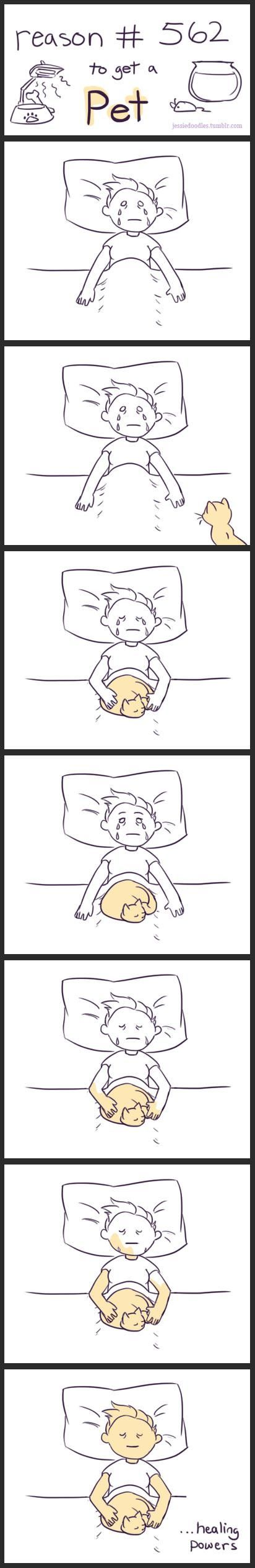 Cuddle cures.