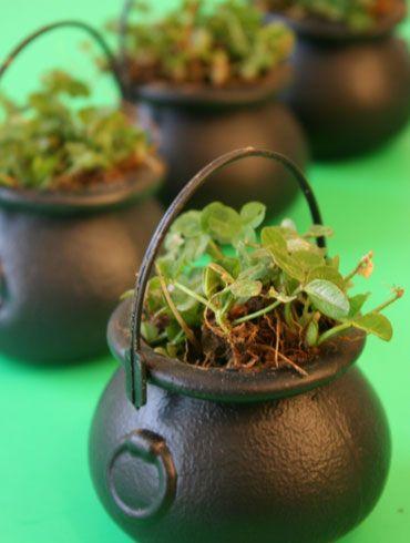 Click pic for 50 St Patricks Day Crafts for Kids - Shamrock Kettles   Easy Crafts for Kids